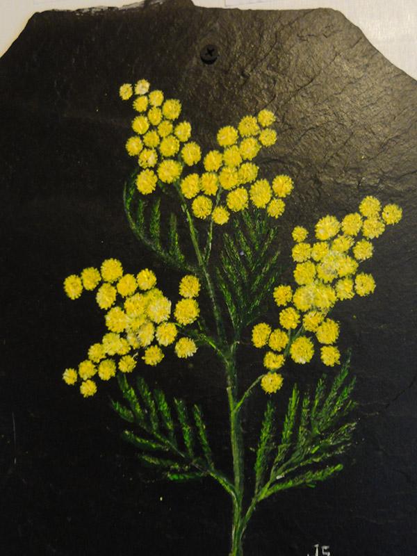 Exposition des tableaux de fleurs de J.SUJDOVIC