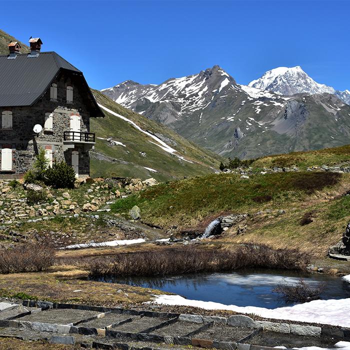 jardin alpin de la chanousia et vue sur le mont blanc