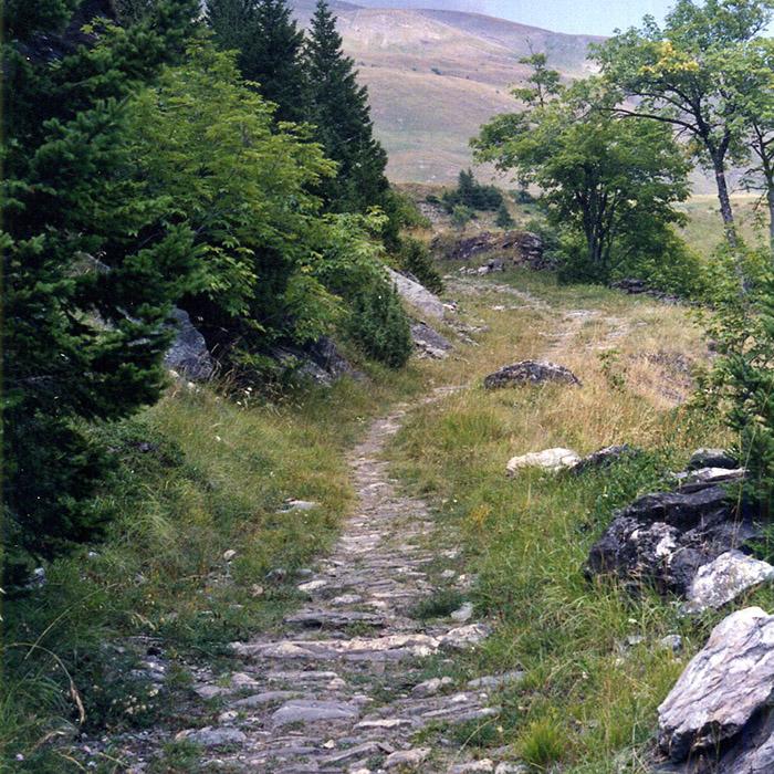 voie romaine au col du petit saint bernard